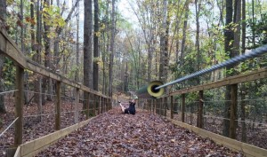 ropes course and zipline in Raleigh